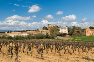 Agriculture et Paysages_16