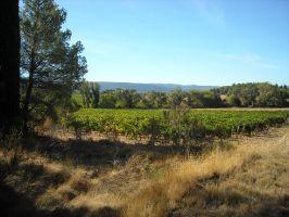 Agriculture et Paysages_17