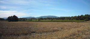 Agriculture et Paysages_21