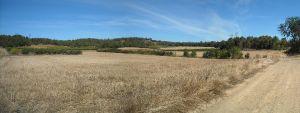Agriculture et Paysages_24