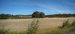 Agriculture et Paysages_25
