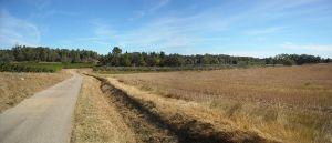 Agriculture et Paysages_32