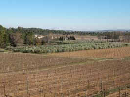 Agriculture et Paysages_6