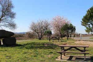 printemps_2016_29